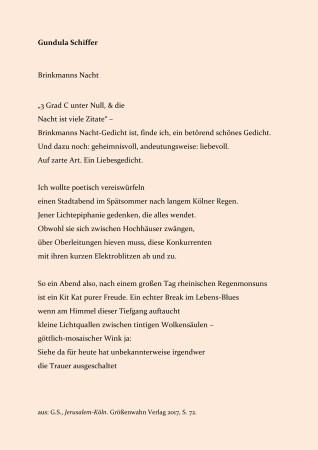 """Gundula Schiffer: """"Brinkmanns Nacht"""""""